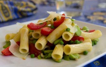 Pasta Salad with Fava Beans , Tomatoes and Parmesan