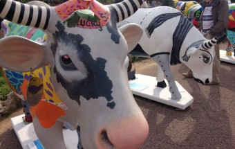 Painted Cows in Cannes, France